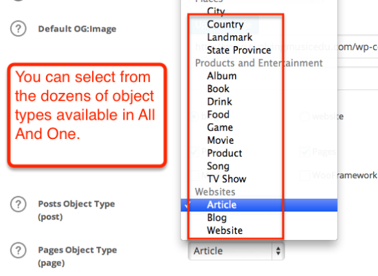 all in one seo object type options